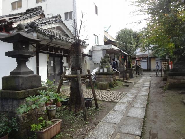 皆中稲荷神社5