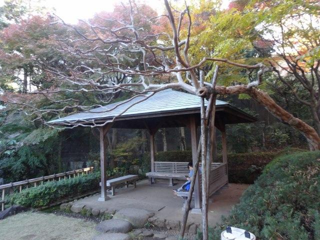 池田山公園3