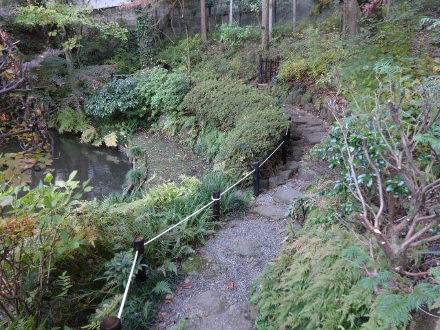 池田山公園7