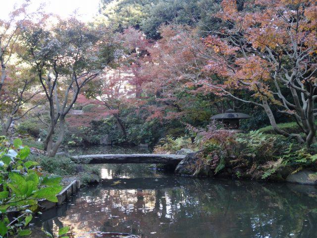 池田山公園8
