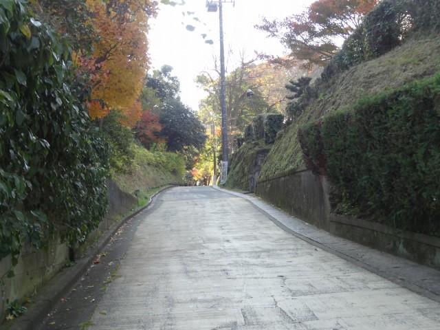 亀ヶ谷坂切通1