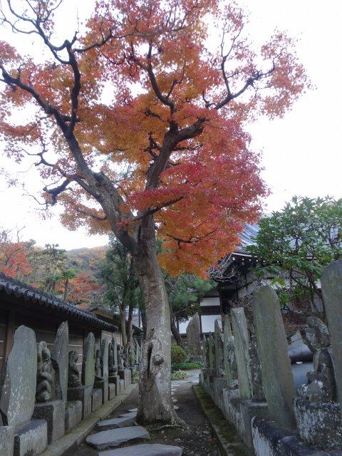 円覚寺14