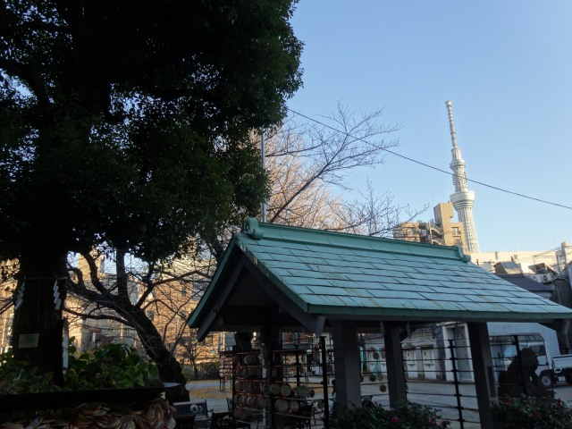 今戸神社13