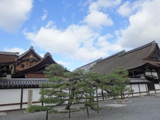 西本願寺17