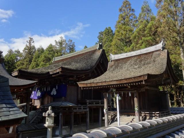 苗村神社19