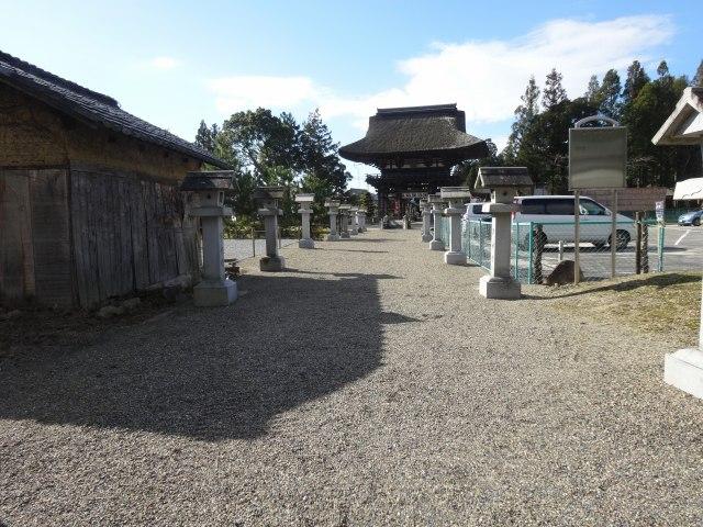苗村神社3