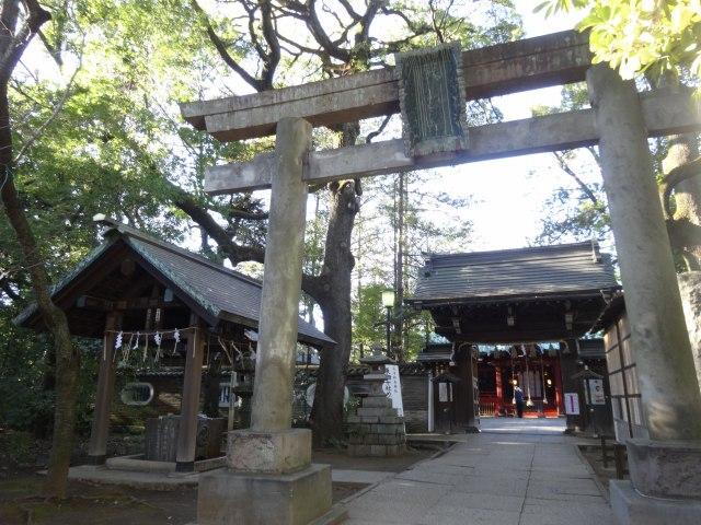赤坂氷川神社17