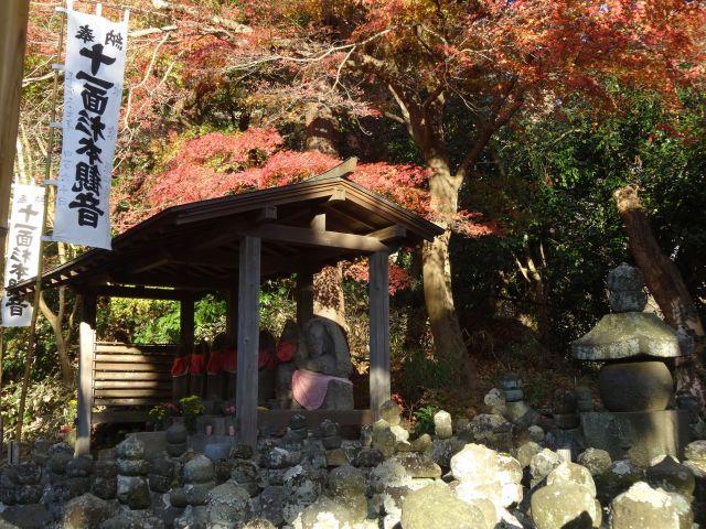 杉本寺11