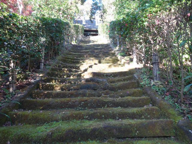 杉本寺12