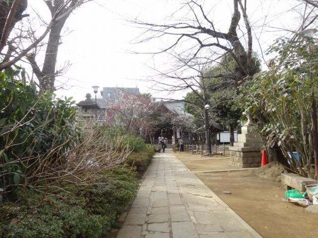 鳩森八幡神社2