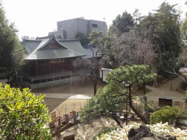 鳩森八幡神社9