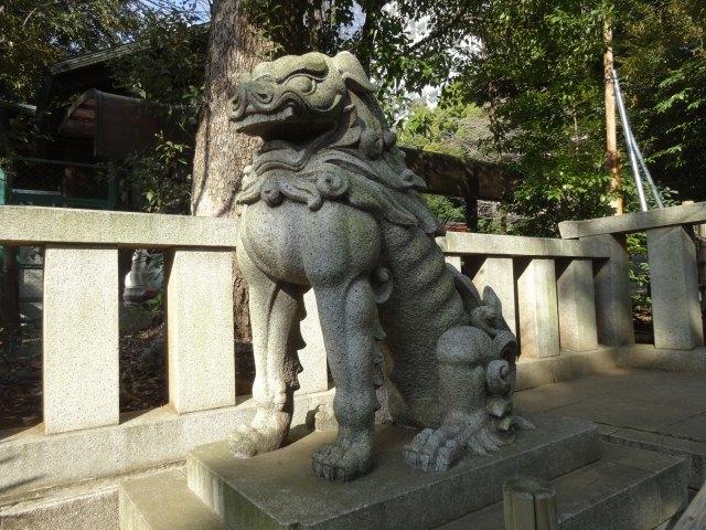 渋谷氷川神社7