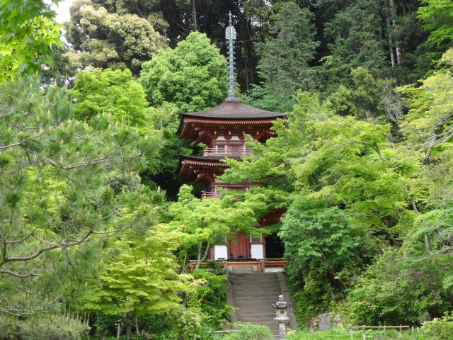 浄瑠璃寺10