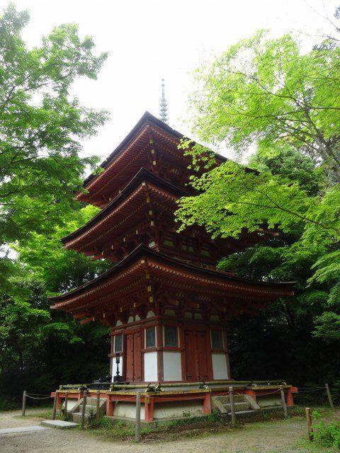 浄瑠璃寺12