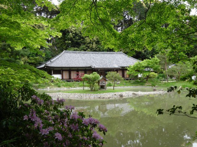 浄瑠璃寺14