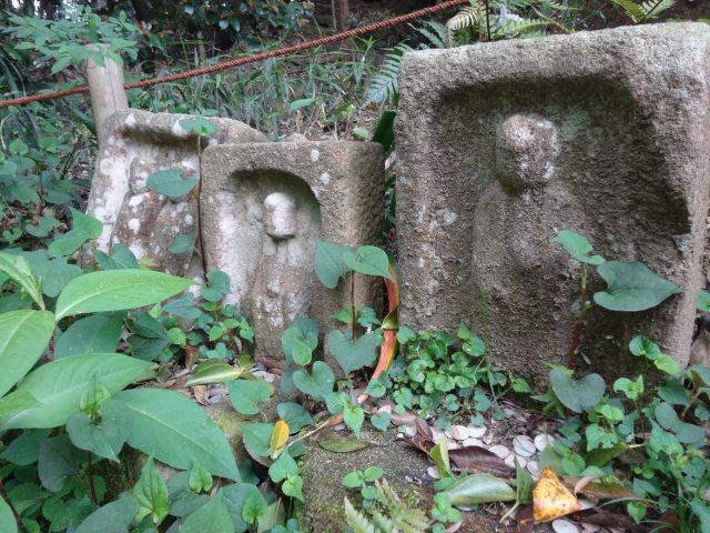 浄瑠璃寺15