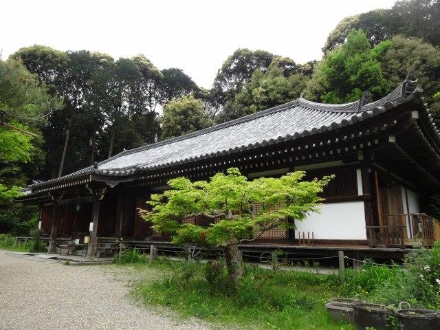 浄瑠璃寺16