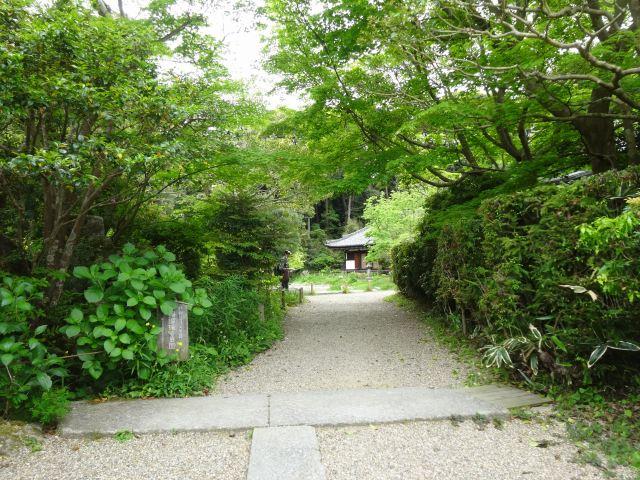 浄瑠璃寺7