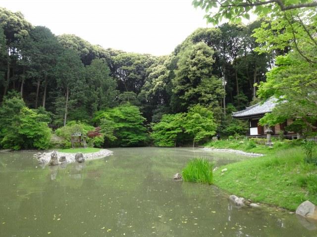 浄瑠璃寺9