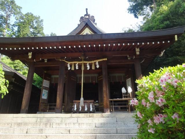 飛鳥坐神社9