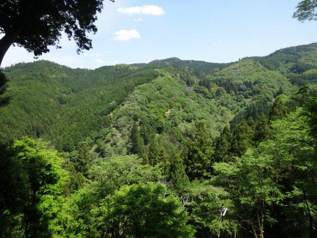 吉水神社14