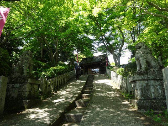 吉水神社2