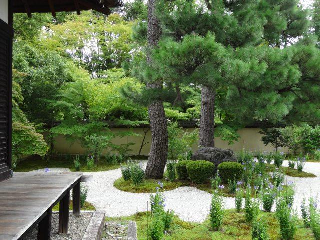 蘆山寺11
