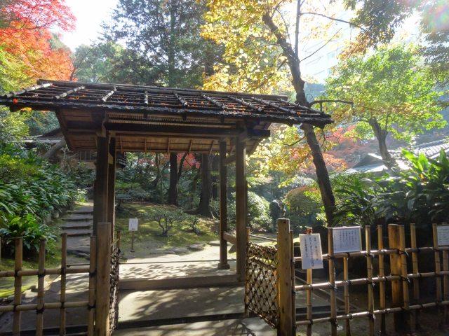 旧古川庭園12