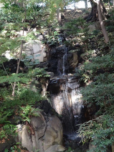 旧古川庭園13