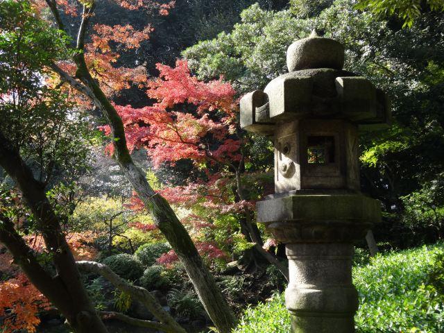 旧古川庭園14