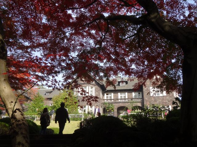 旧古川庭園7