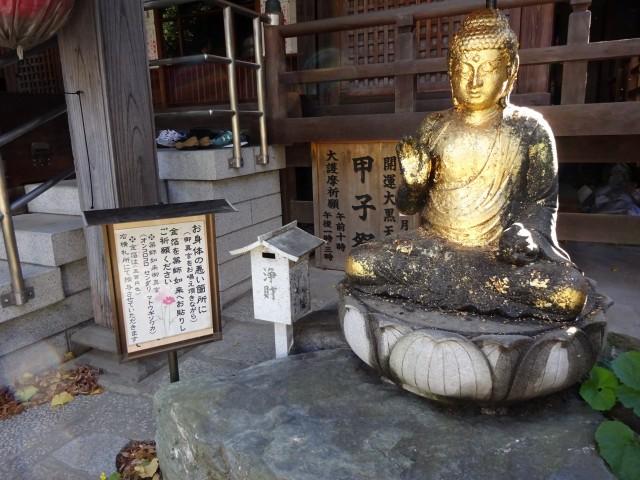 大円寺11
