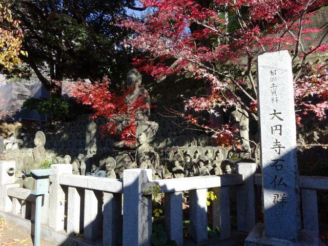 大円寺12