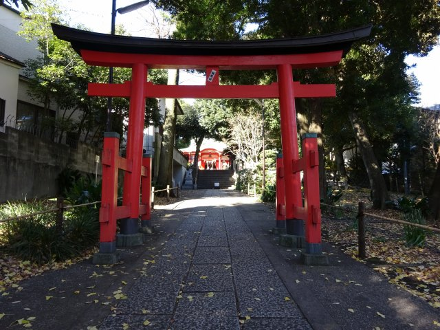 自由が丘熊野神社2