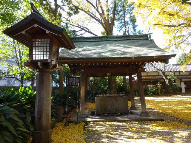 奥沢神社3