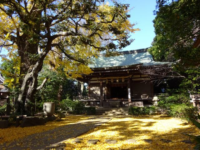 奥沢神社8