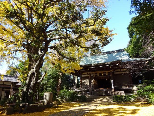 奥沢神社9