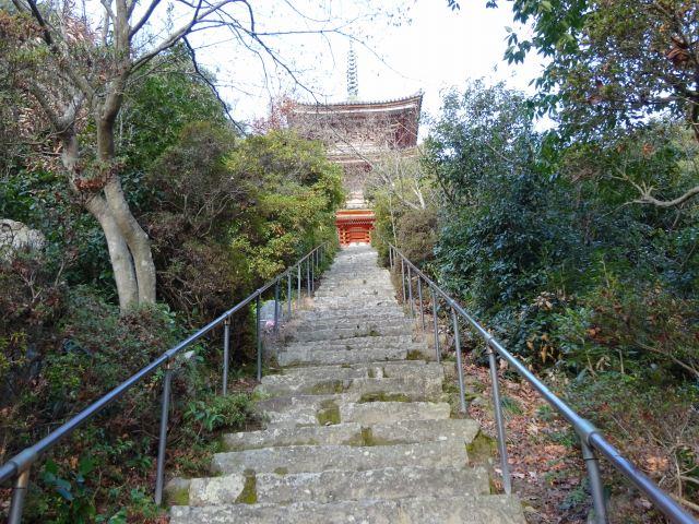 向上寺11