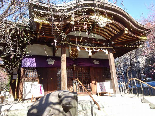 牛天神北野神社12