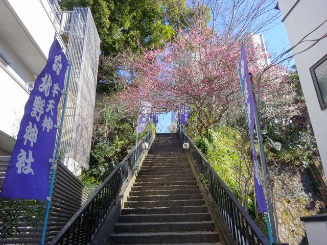 牛天神北野神社2