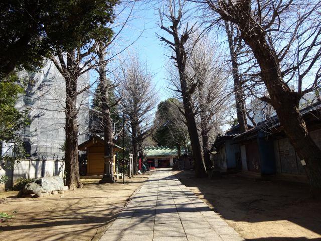 駒込天祖神社3