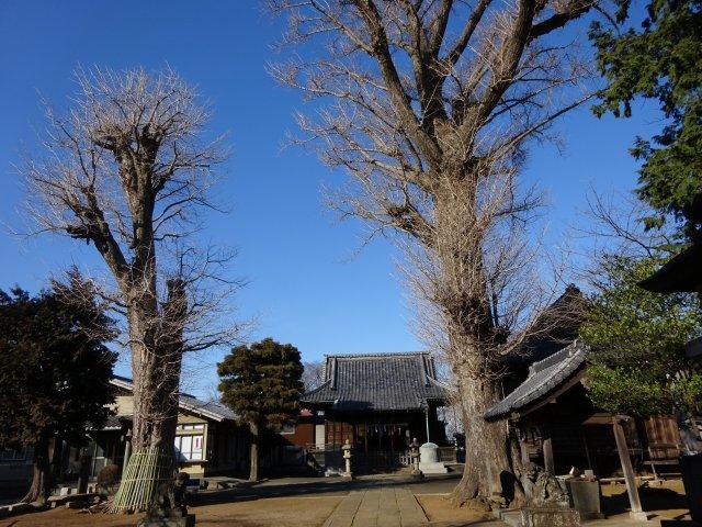 赤塚諏訪神社12