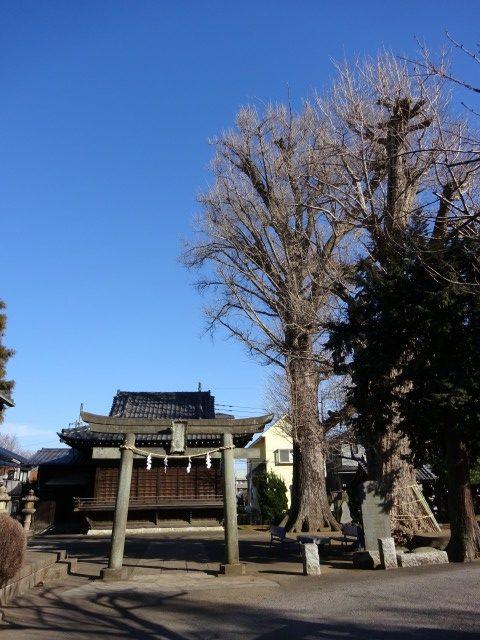 赤塚諏訪神社13