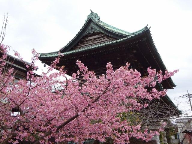 法華経寺3