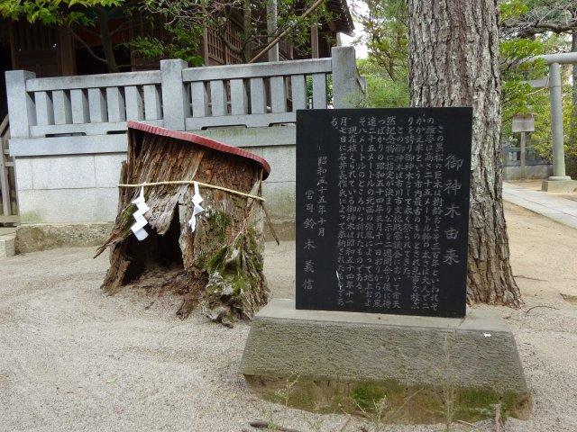白幡天神社12