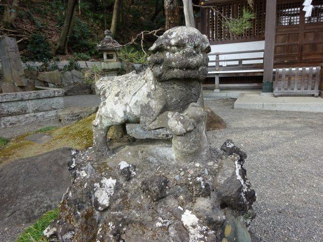 貫井神社5