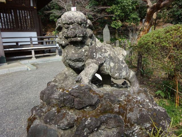 貫井神社6