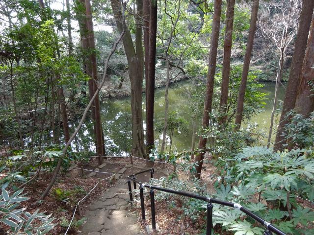滄浪泉園6