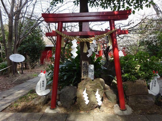 八重垣神社10