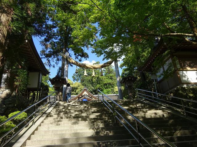 大神神社9